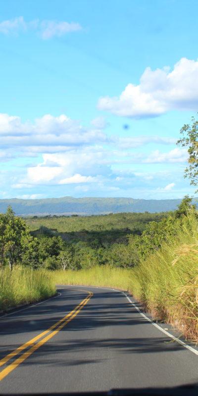 Road Trip pelo Brasil: diário de bordo (parte 1)! De Brasília a Inhotim!