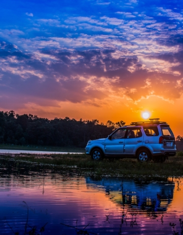 ROAD TRIP PELO BRASIL: De Brasília a Inhotim!