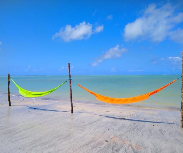 MELHORES PRAIAS DE ALAGOAS: Maceió, litoral norte e sul!