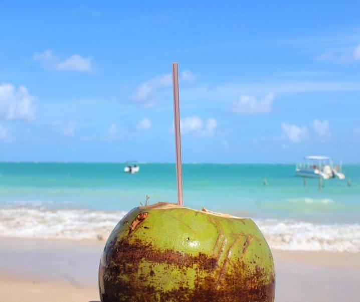 5 MELHORES PRAIAS DE MARAGOGI: O Caribe Brasileiro fica em Alagoas!